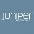 Juniper_col